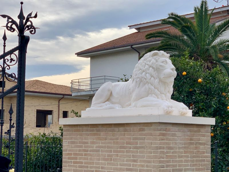 The Lions of Fermo